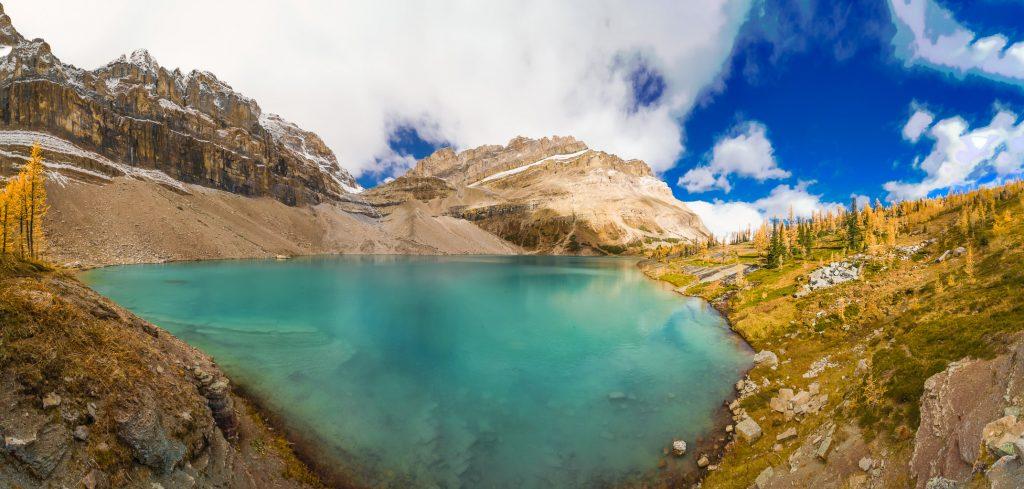 Zigadenus Lake.